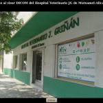 visor_dicom_veterinarios