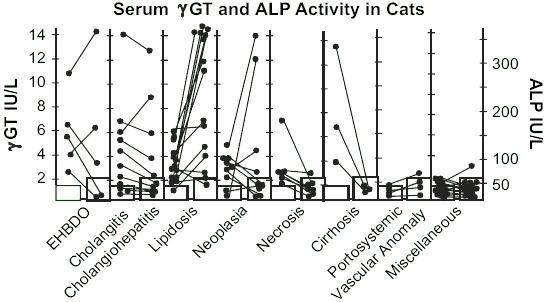 fosfatasa alcalina en perros tratamiento
